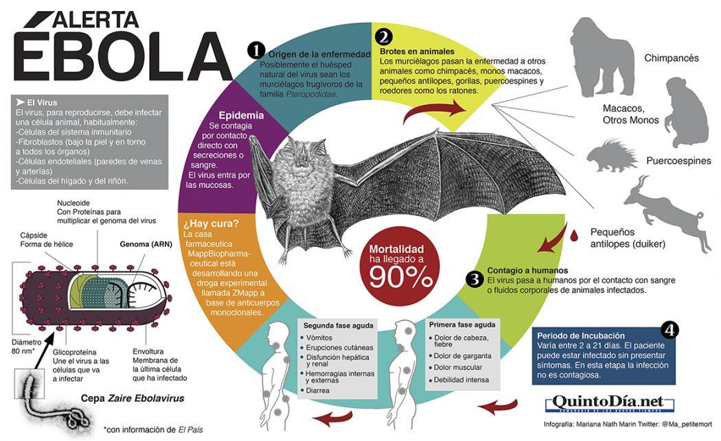 Infografía ébola