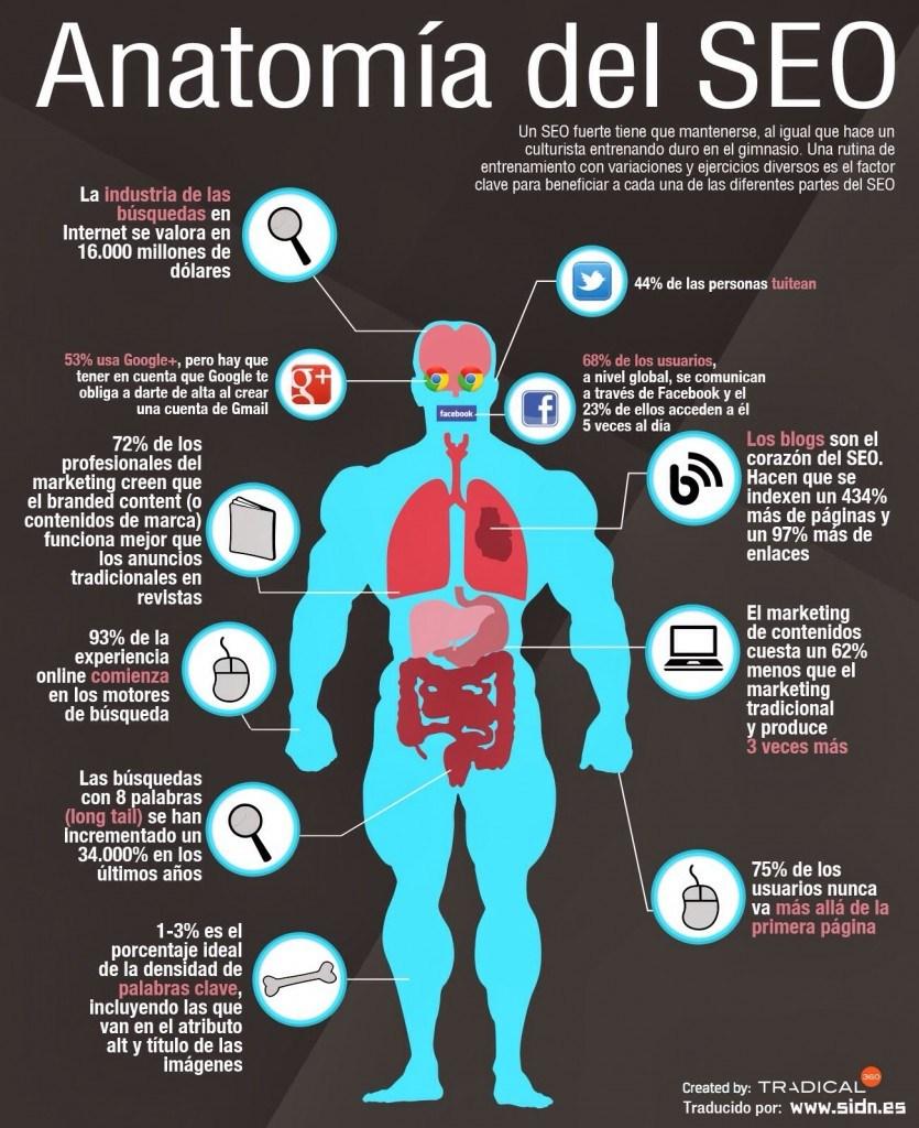 infografia-anatomia-seo