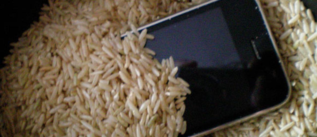 Arreglar tu móvil si se ha mojado ¿Cómo arreglar un móvil mojado con arroz?
