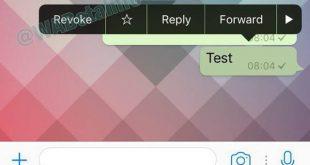 ¿Cómo borrar mensajes de Whatsapp?