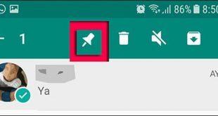 Whatsapp nueva caída y más funcionalidades destacar o fijar hasta tres conversaciones o borrar conversaciones