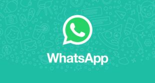 ¿Cómo recuperar los archivos que borrados de WhatsApp?