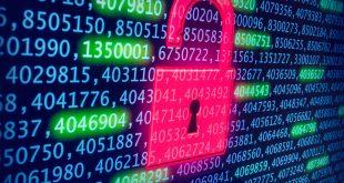 Los 5 hábitos que debe tener una empresa para mejorar la seguridad de sus datos