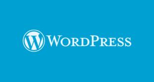Wordpress se hacer mayor y ya es mayor de edad. 18 años. Feliz cumpleaños