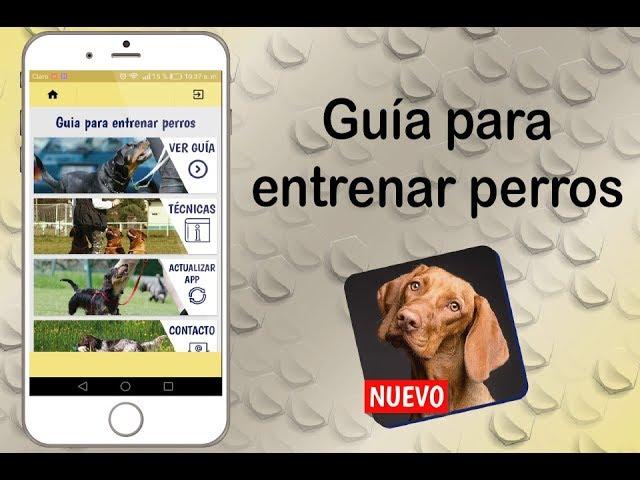 Día del perro: La mejores aplicaciones para tu mascota